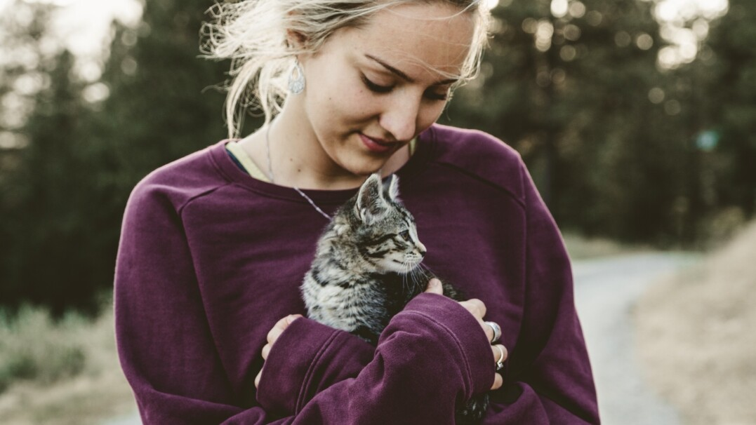 Koty postrzegają nas jak swoich rodziców