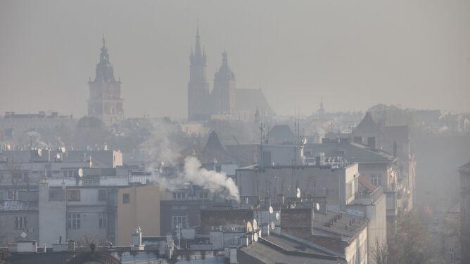 Nieleczona alergia na smog może prowadzić do rozwoju astmy oskrzelowej