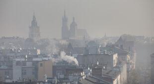 Piotr Siergiej z Polskiego Alarmu Smogowego o zanieczyszczeniu powietrza