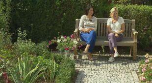 Ogród preriowy na Kaszubach. Zielony taras z altaną (odc. 603)